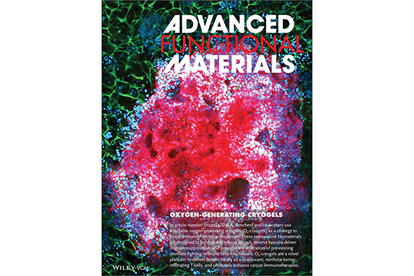Cover image of Advanced Functional Materials.