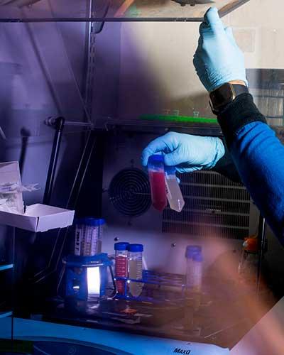 Student holding polypropylene vial.